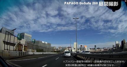 papagoday-8-20.jpg