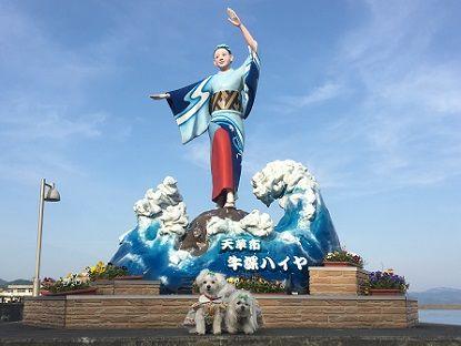 天草Ⅱ (12)