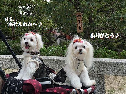 大宰府 (8)