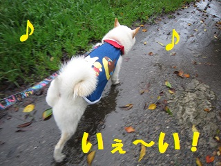 IMG_1500-1.jpg