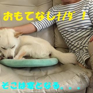 image002-1_20160917114831b0b.jpg