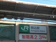 DSCN7859.jpg