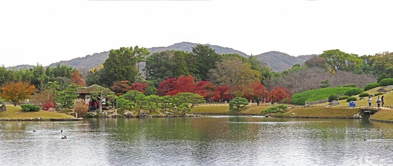 s-20161128 後楽園今日の園内沢の池越しに眺めた紅葉の名残ワイド風景 (1)