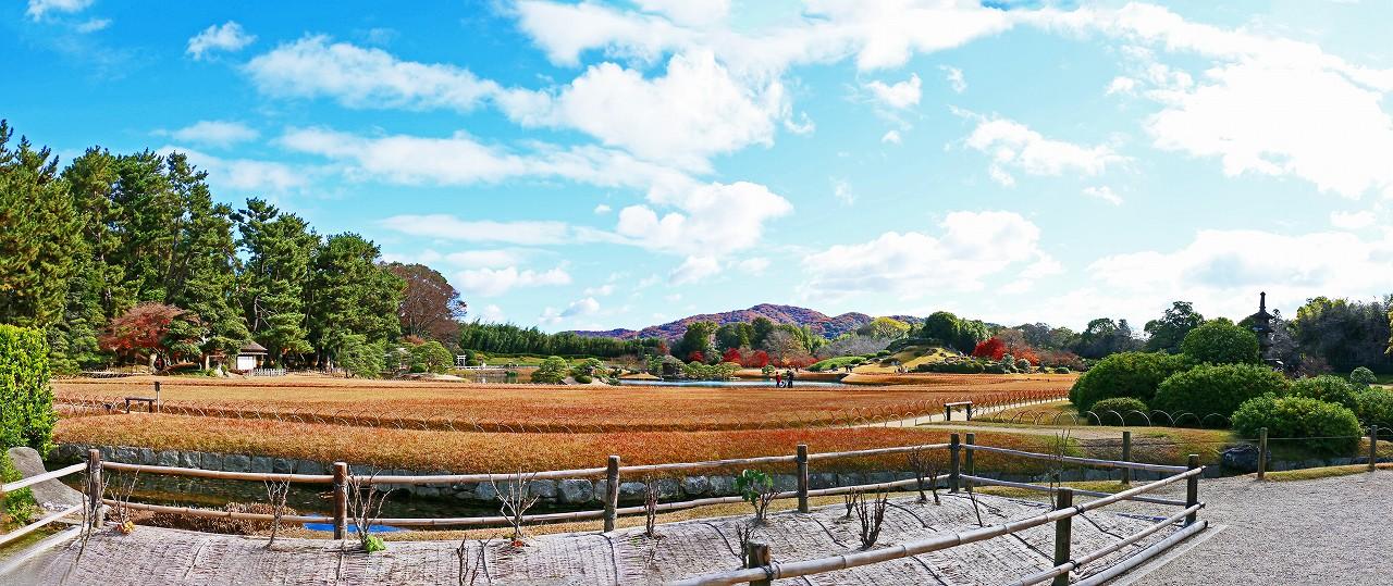 20161211 後楽園今日の鶴鳴館前庭から眺めた園内ワイド風景 (1)