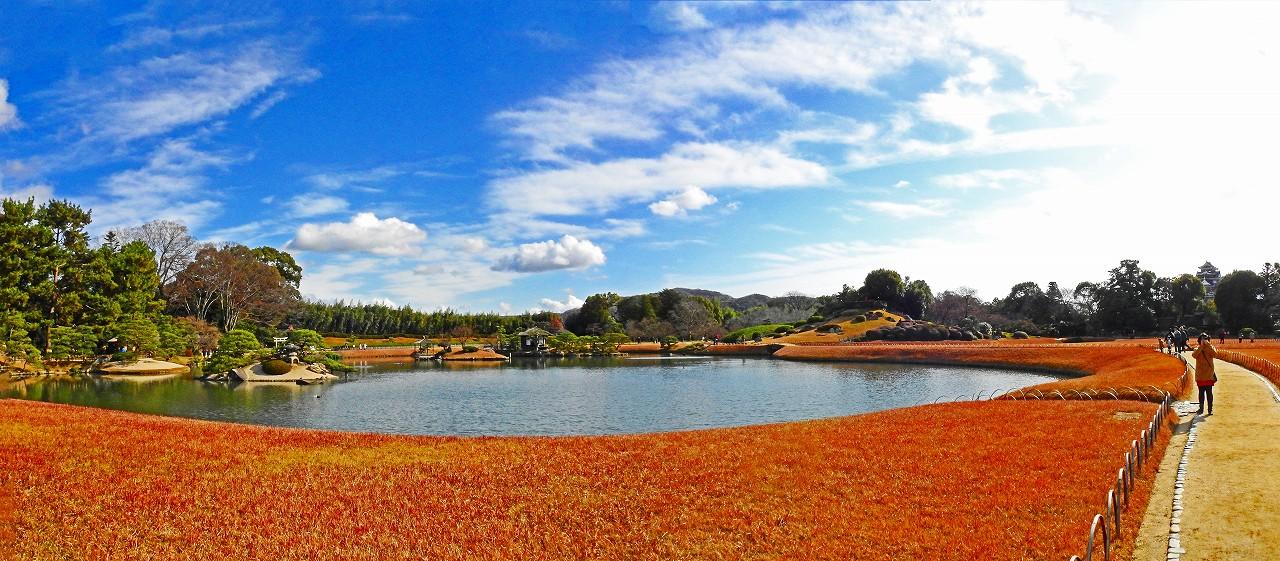 20161224 後楽園今日の沢の池越しに眺めた園内ワイド風景 (1)