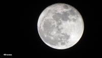 161115-moon1.jpg