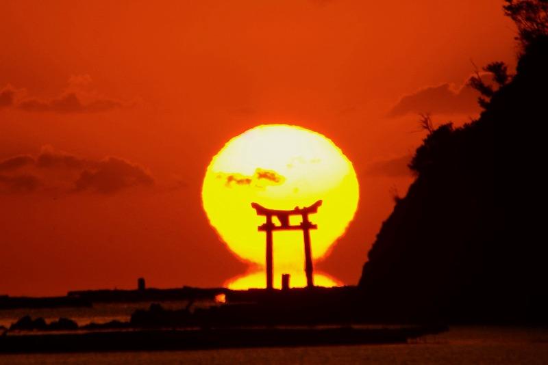 長島の達磨太陽6-2 トリミング