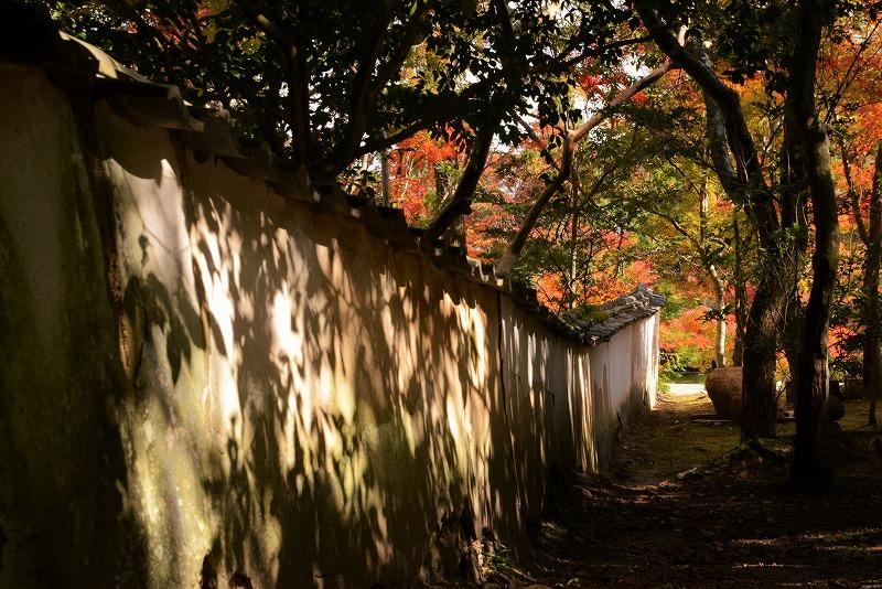 宝福寺の紅葉8
