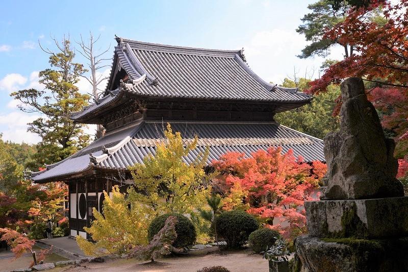 宝福寺の紅葉10
