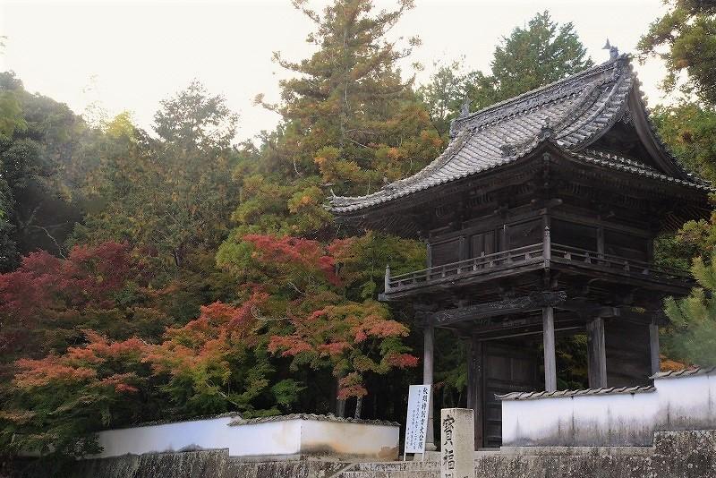 宝福寺の紅葉19