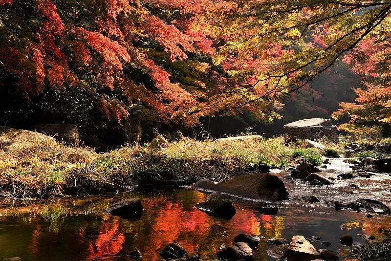 豪渓の紅葉15