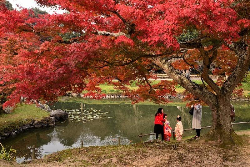 近水園の紅葉3
