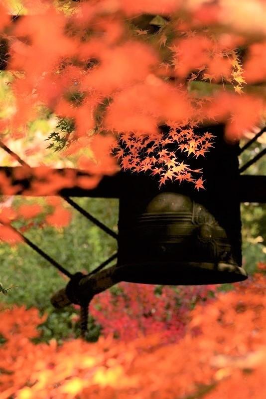 鐘突き堂の紅葉3t