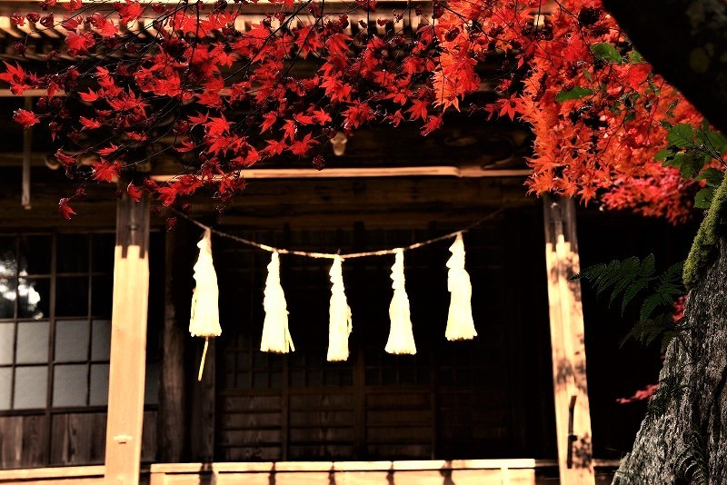 常昌院の紅葉11