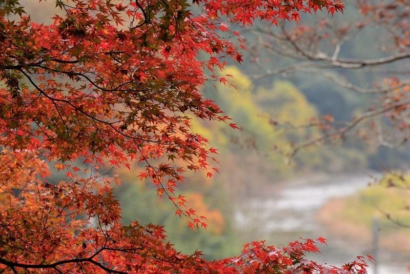 天神峡の紅葉11