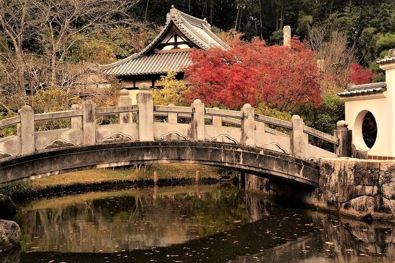 まきび公園の紅葉3