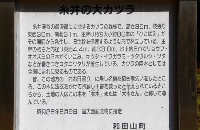 20_20161114190943de2.jpg