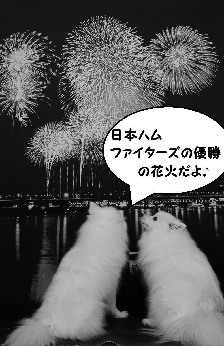 1-2_201610300027141e5.jpg