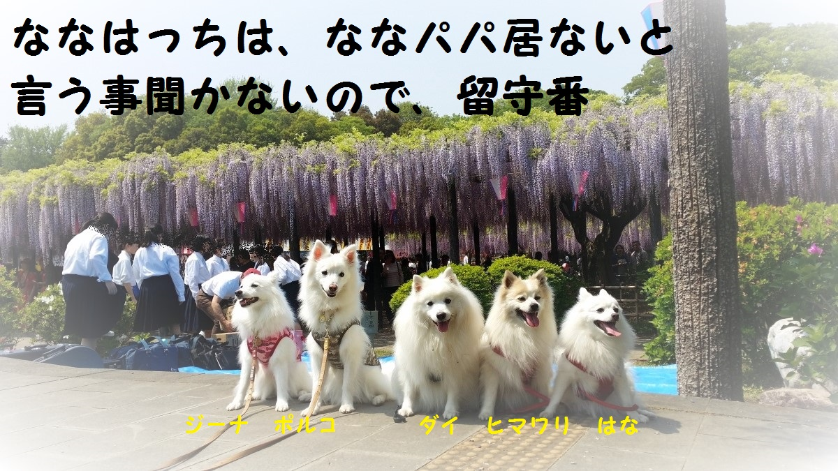 20160501_123846.jpg