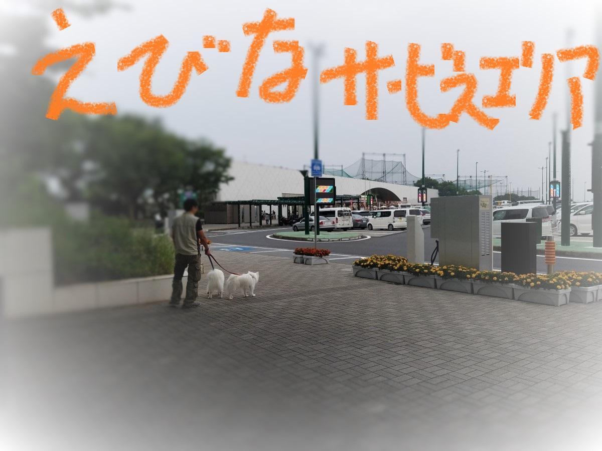 20160528_180709.jpg