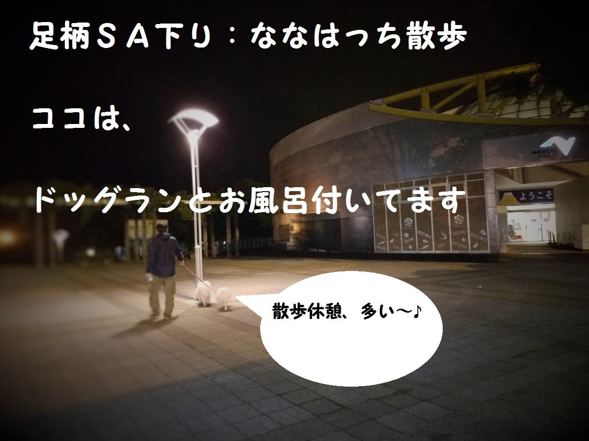 20160528_225430.jpg