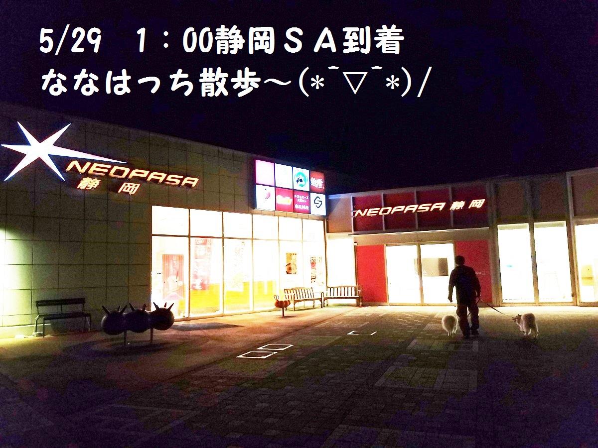 20160529_010540.jpg