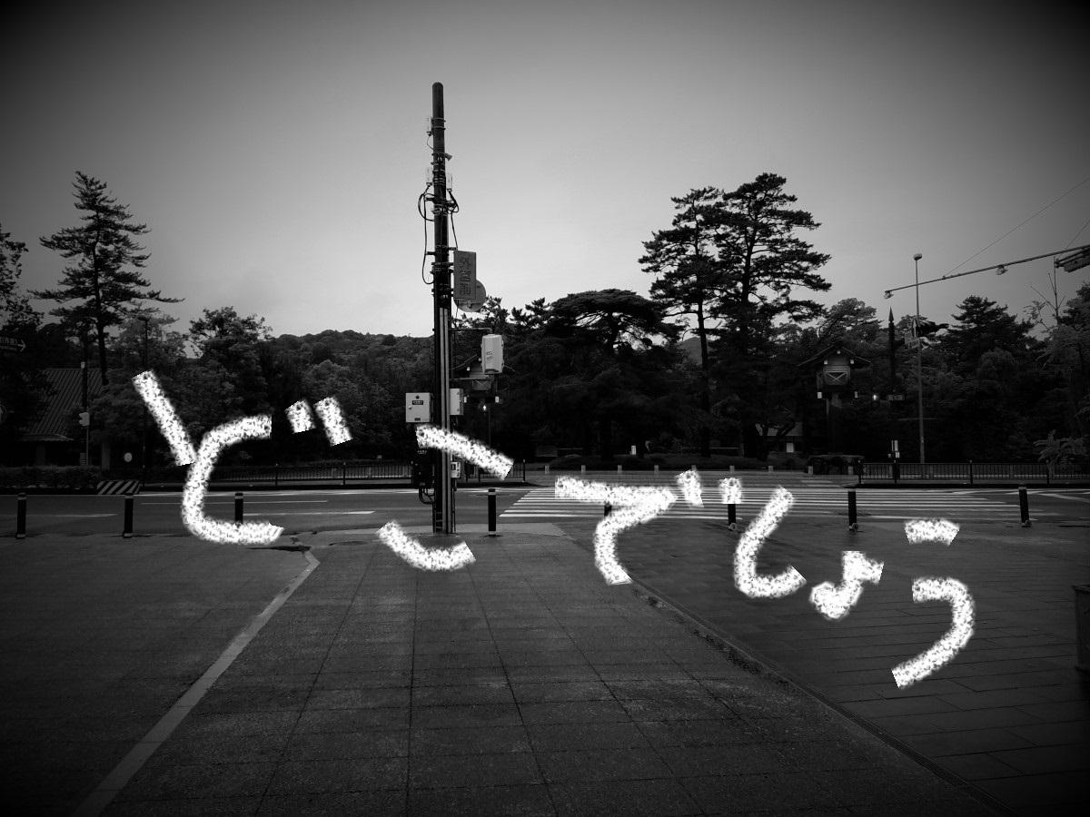 20160530_064413.jpg