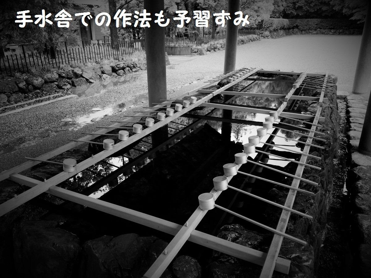 20160530_064907.jpg