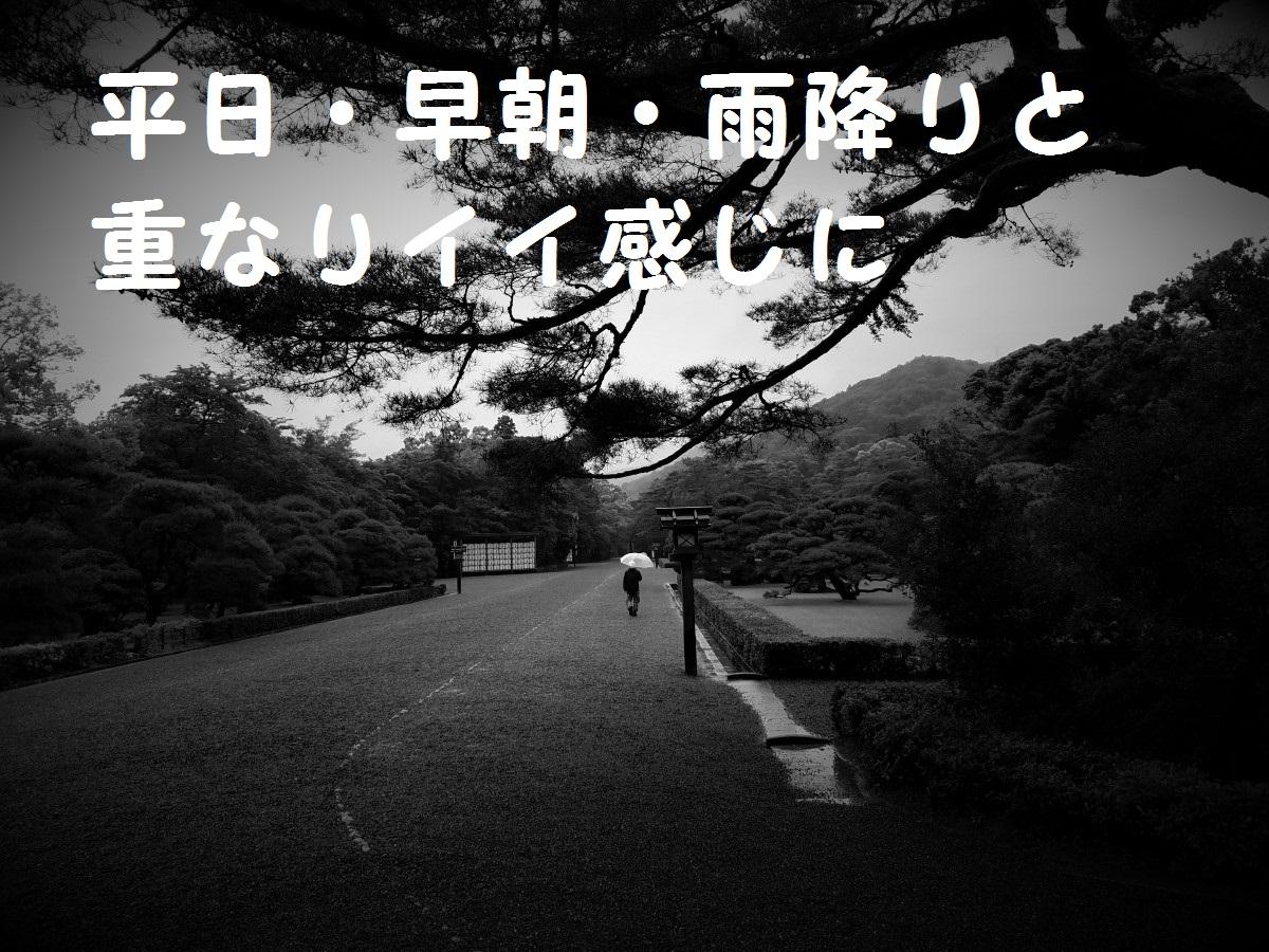 20160530_073147.jpg