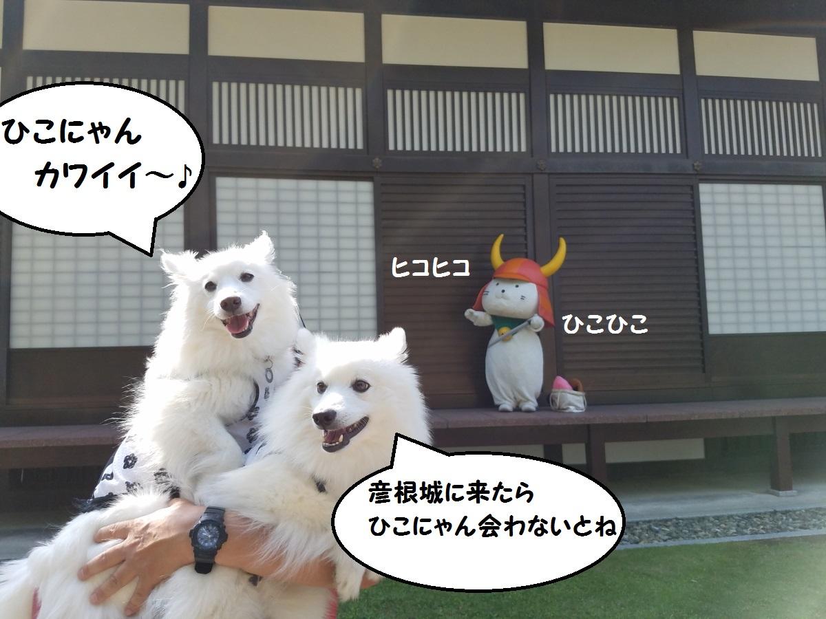 20160531_152158.jpg