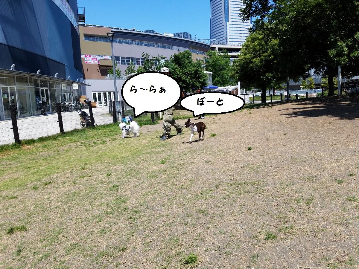 20160603_131242.jpg