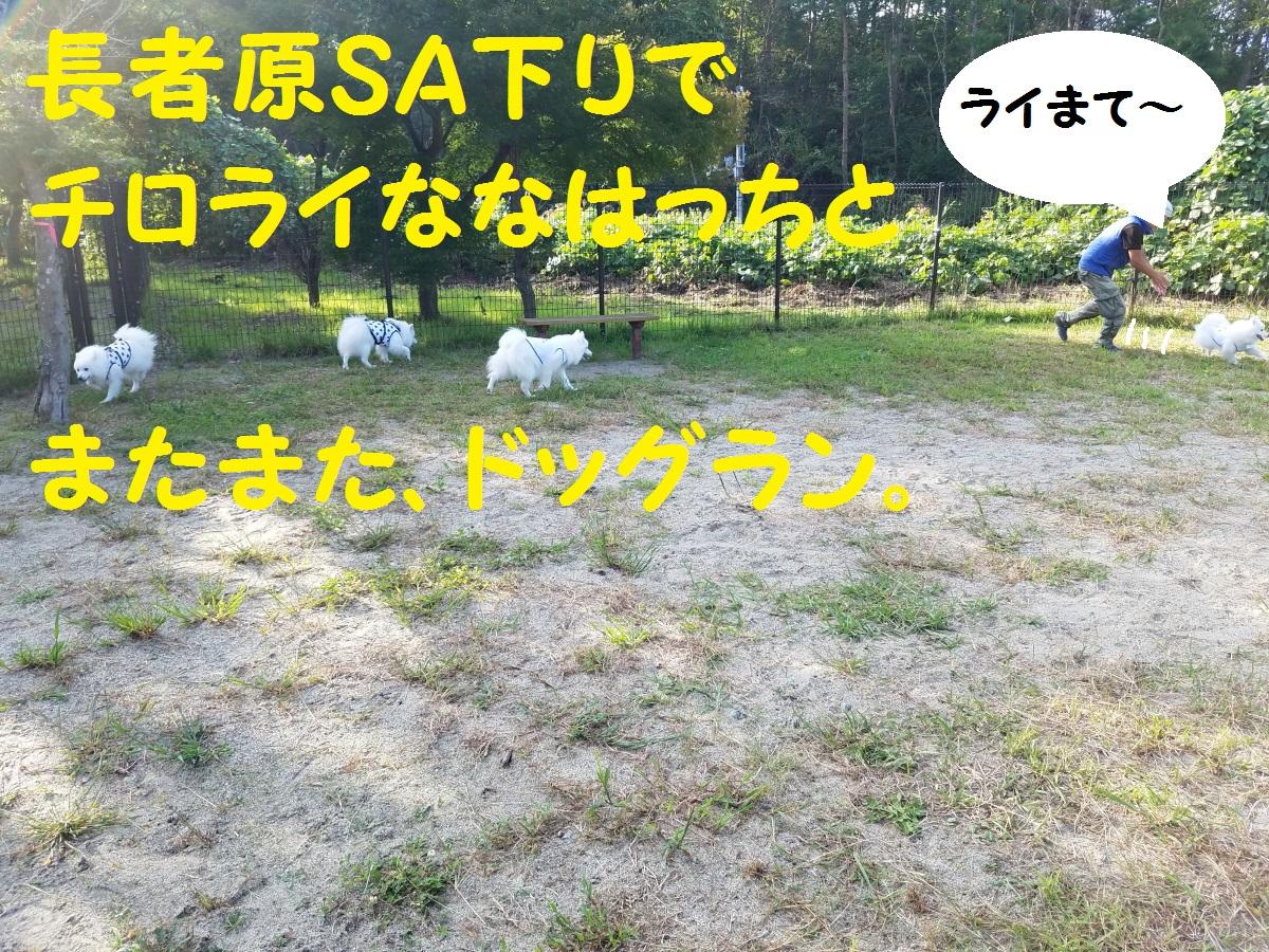 20160925_152538.jpg