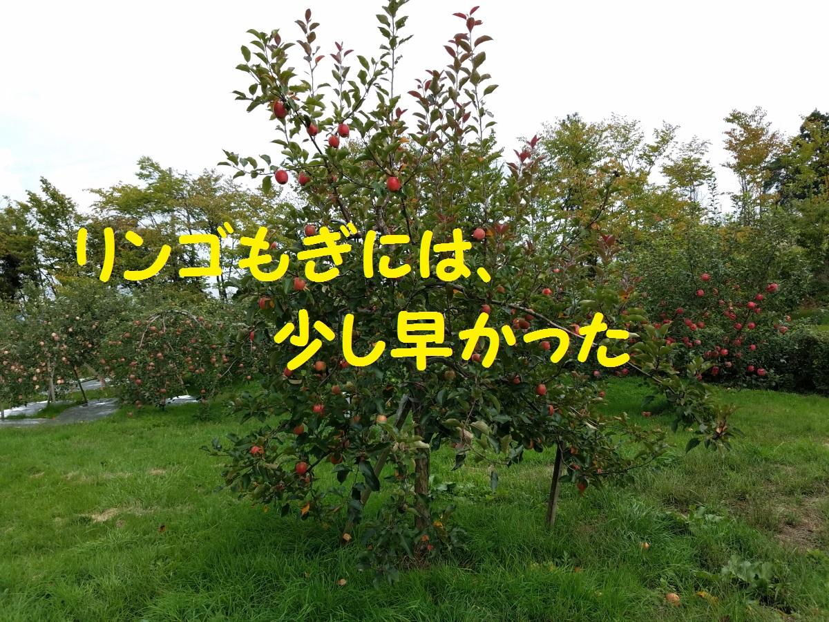20160929_120750.jpg