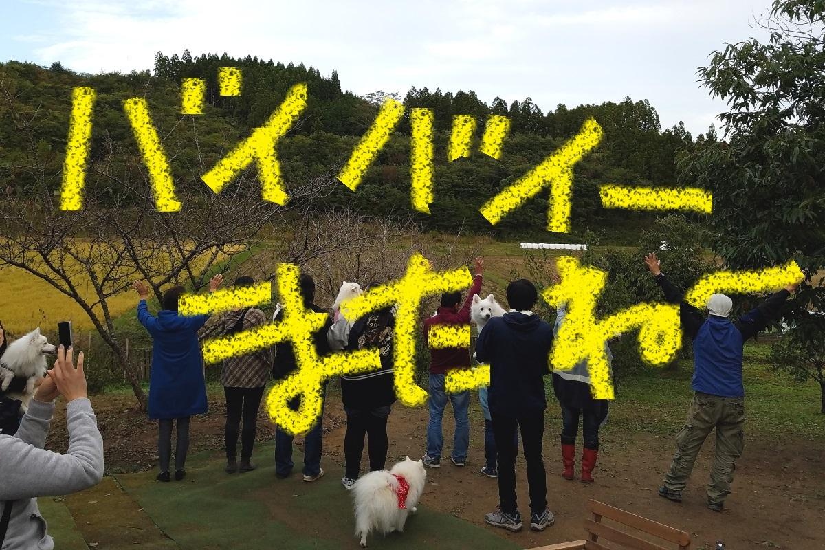 20161009_160324.jpg