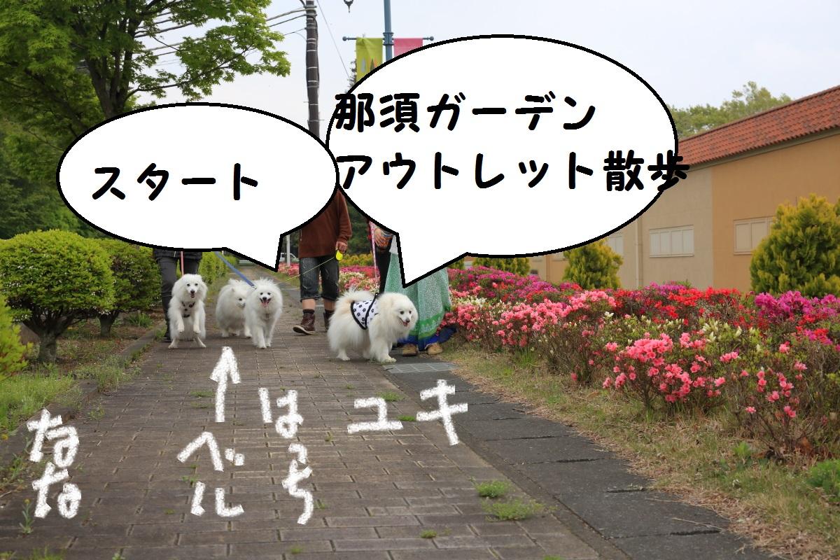 2K5A0480.jpg