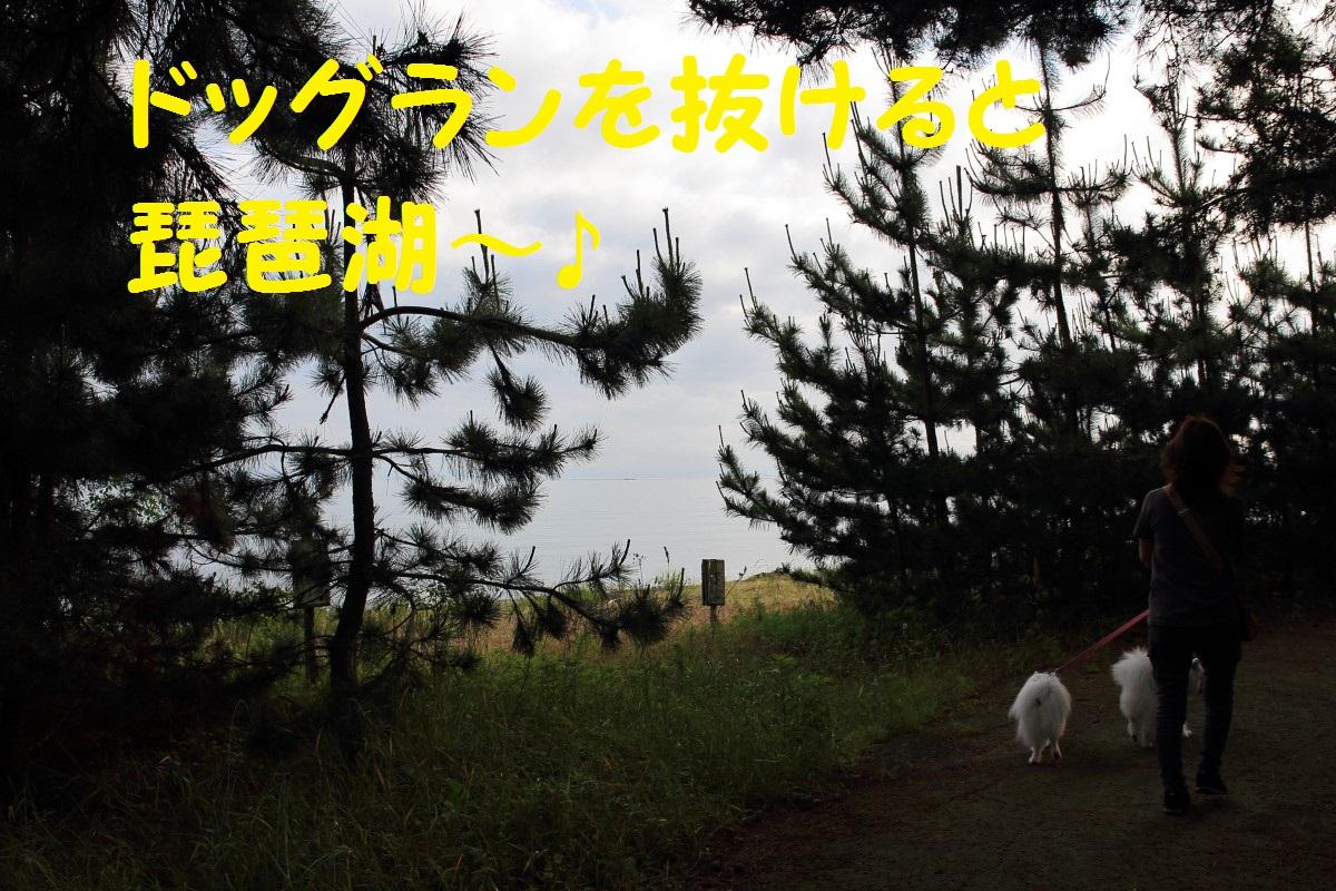 2K5A3983.jpg