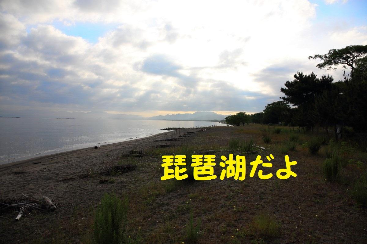 2K5A3984.jpg