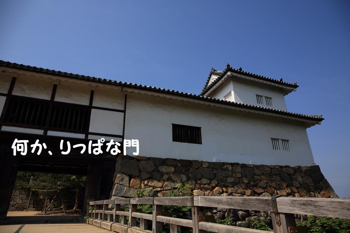 2K5A4668.jpg