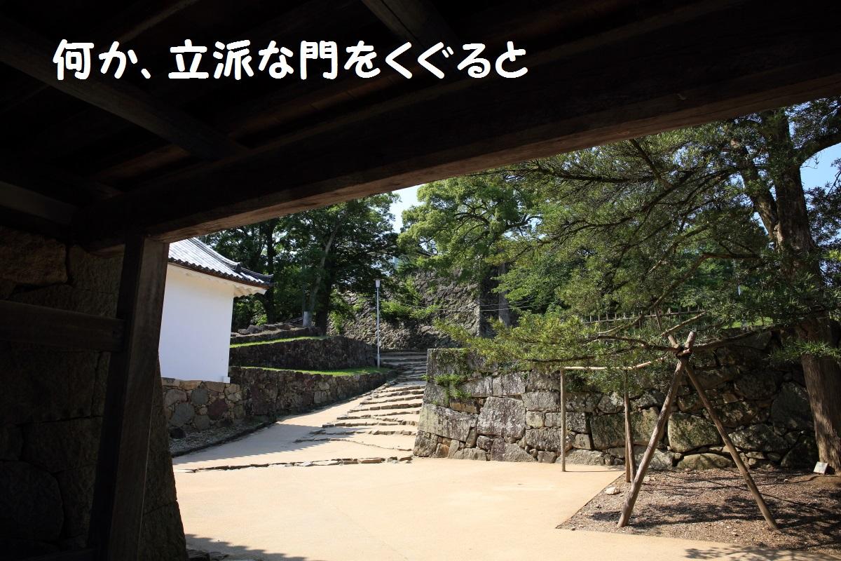 2K5A4670.jpg