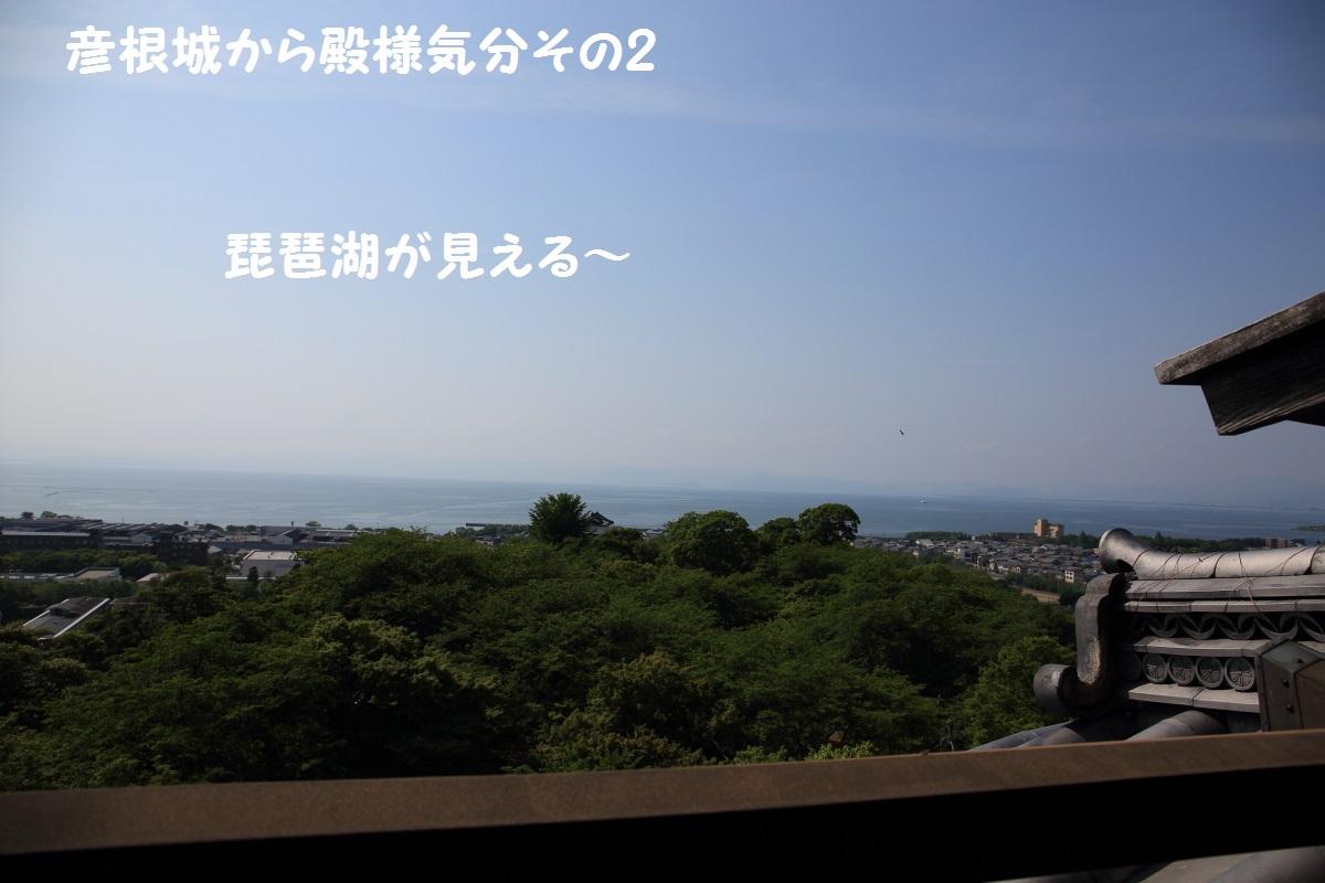2K5A4693.jpg