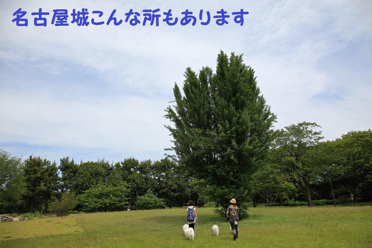 2K5A4832.jpg