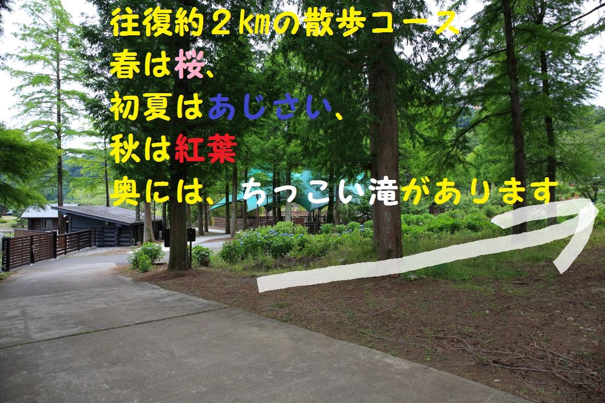 2K5A6726.jpg
