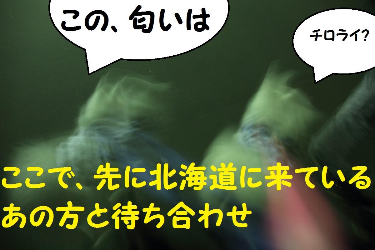 2K5A8766.jpg