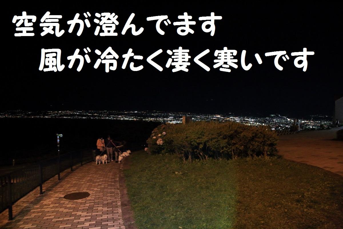 2K5A8856.jpg