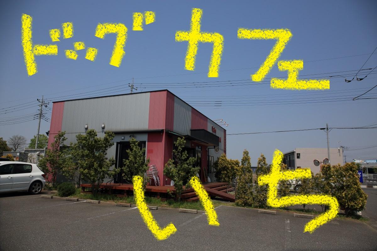 2K5A9514.jpg