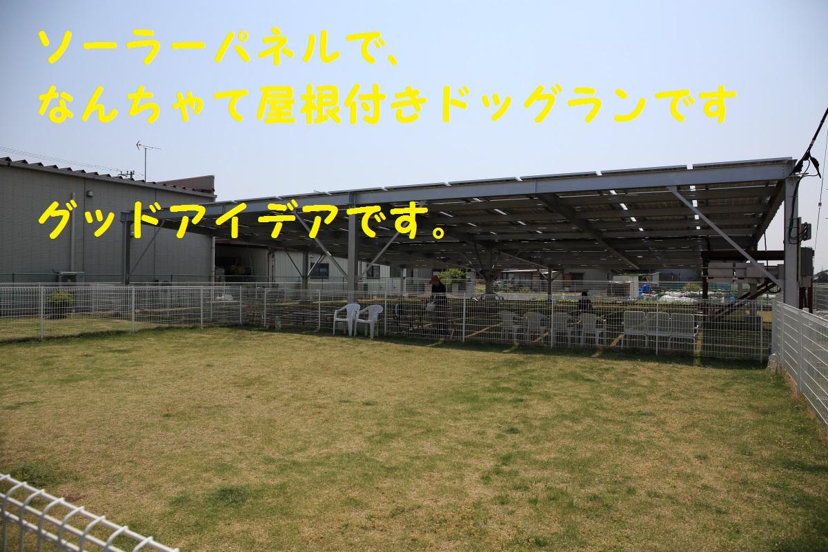 2K5A9516.jpg