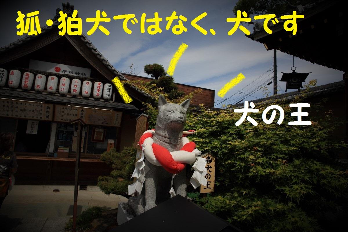 3_20160823085220db4.jpg