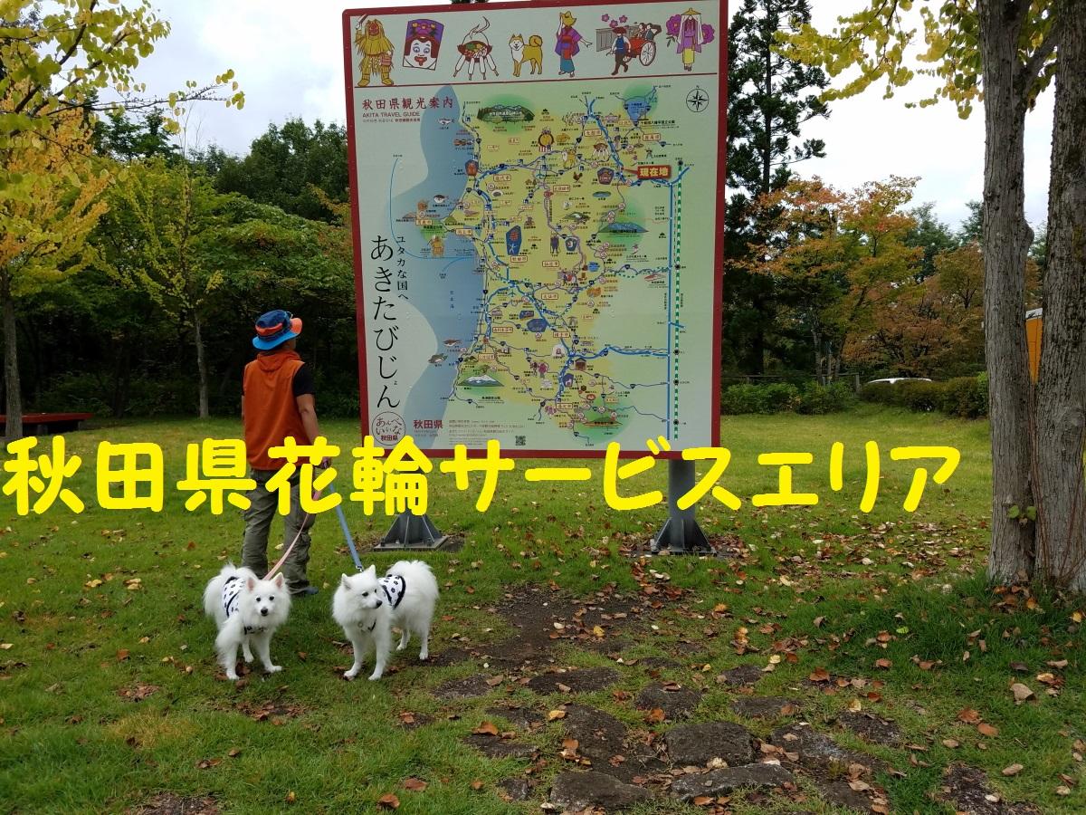 4_201610131959007ae.jpg