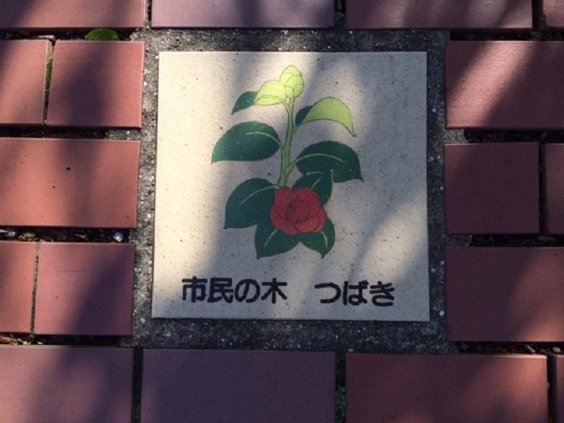 20161106_12.jpg
