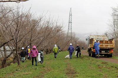 桜並木清掃05